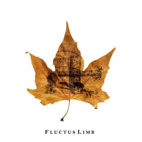 Fluctus Limb