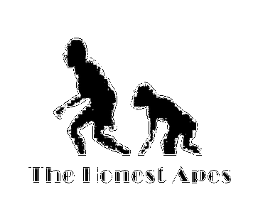 "Intervista a ""THE HONEST APES"""