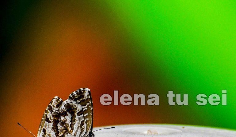 Video di Elena tu Sei, il nuovo singolo delle Pitwine