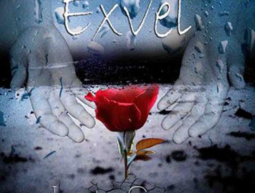 EXVEL