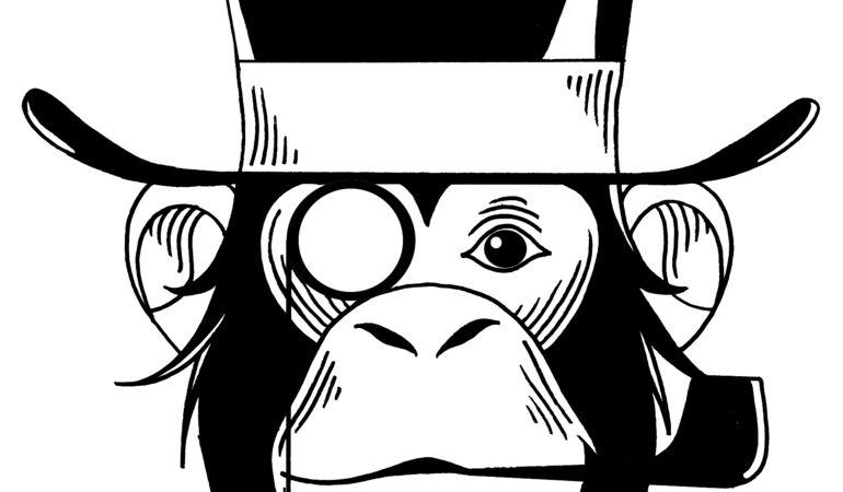 Le Scimmie Eclettiche