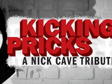 Tastierista amante di Nick Cave cercasi