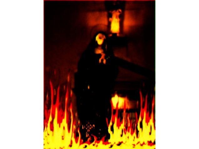 il Body in fiamme