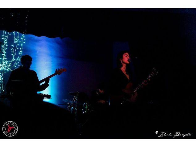Rowel live